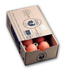 Huevos redondo 6un