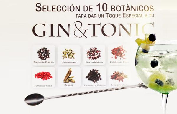 Como darle un toque a tu Gin Tonic