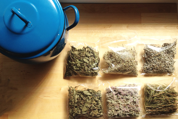 Hierbas arom ticas para cocinar de torre gourmet for Plantas aromaticas para cocinar