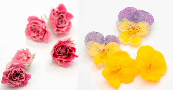 Las variedades de las flores cristalizadas