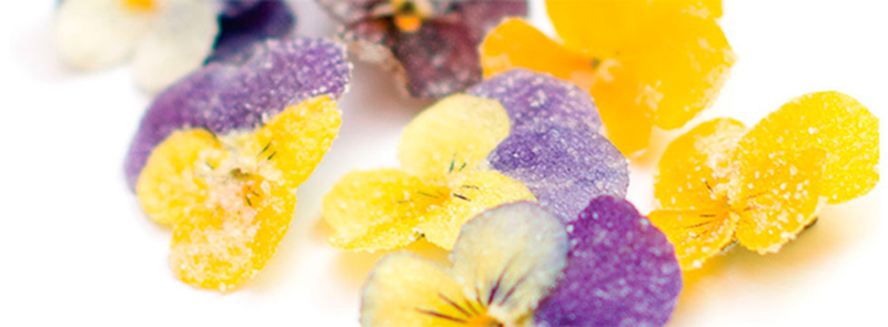 Flores cristalizadas para cocinar de torre gourmet - Flores para cocinar ...